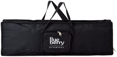 Blueberry Keyboard bag Compatible With Casio SA-76, Casio SA-77, Casio SA-78 Keyboards