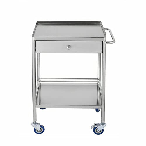 Stainless Steel 2-Tier Trolley Medical Laboratory Equipment Cart Spa Beauty Salon Tool Carts (1 Drawer)