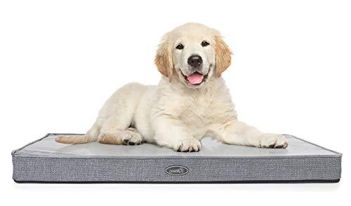 Pecute Hundekissen für Mittlerer Hunde Hundebett Rechteck(89X56X7cm) mit Memory Foam, Hundematratze Ergonomisch Design, Waschbar Plüsch Hundebett mit Leicht zu reinigen Rutschfester Boden