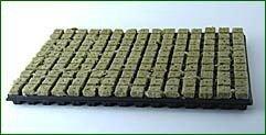 Grodan SBS 25/150 Tapis de culture avec plateau en plastique + 150 cubes de culture
