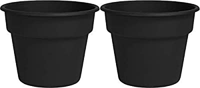 "Bloem DC8-00 Dura Cotta Planter, Black, 8"", 8"" 2 Pack"