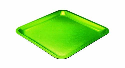 Zak Designs 0204- 0314E Assiette carrée 26cm Vert Seaside mélamine