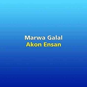 Akon Ensan