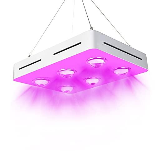 lxxiulirzeu LED Cultive Light Spectrum Completo para la Planta de Invernadero hidropónico Interior Todo el Crecimiento de la Etapa Reemplace la lámpara de Crecimiento (Emitting Color : 900W)