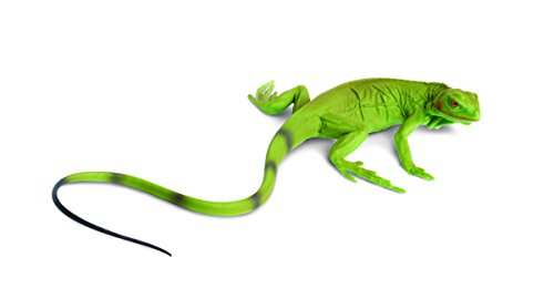 Safari Ltd. Incredible Creatures Iguana Baby - Realistic Hand Painted Toy Figurine Model - Quality Construction from Phthalate, Lead and BPA Free Materials - For Ages 3 and Up