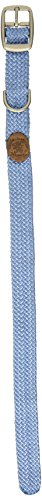 "Mendota Double-Braid Collar, Sky Blue, 1"" Up to 18"""