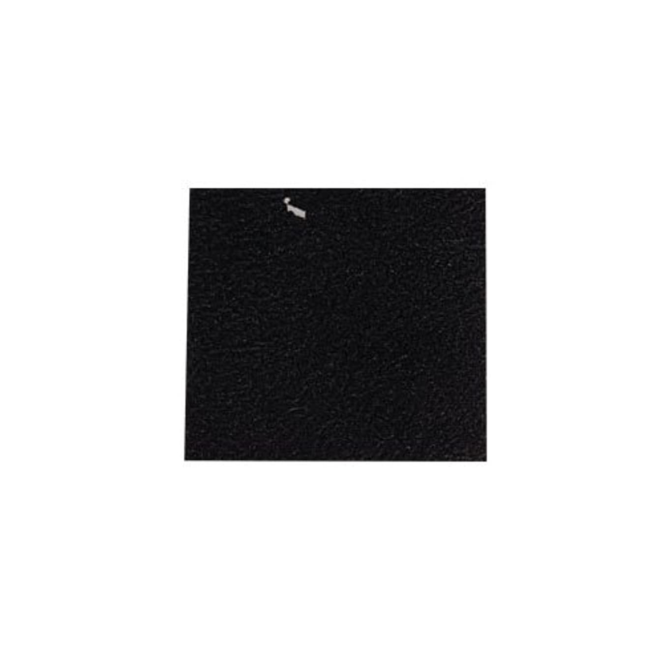 エイリアン慎重に田舎者ピカエース ネイル用パウダー カラー純銀箔 #620 黒色 3.5㎜角×5枚