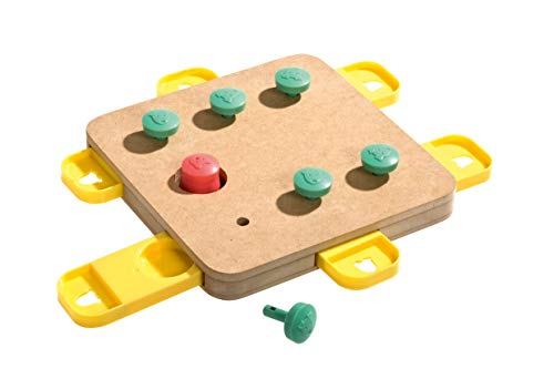 Karlie 1031722 Doggy Brain Train Cube 32 x 32 x 5 cm, Einheitsgröße, Natur