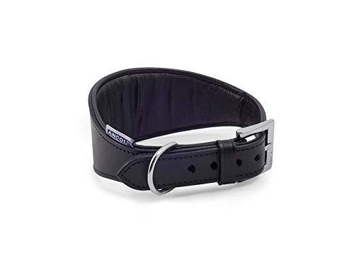 Ancol, gepolstertes Windhund-Halsband aus Leder, 35 cm, Schwarz