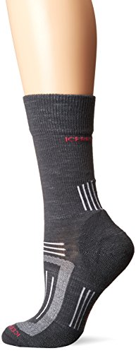 Icebreaker Damen Wandersocken Hike Light Crew Socke, Monsoon, S