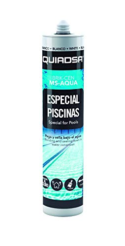 QUIADSA 52503220 Sellante Adhesivo Elástico de Polímero Especial Piscinas, 290 ml