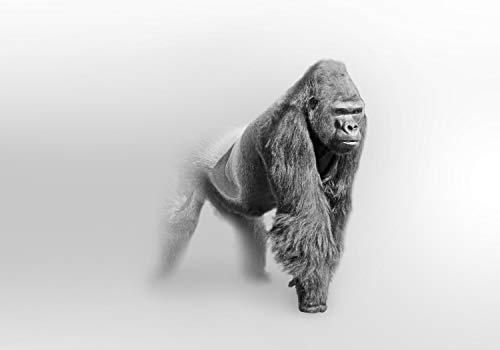 wandmotiv24 Fototapete Gorilla im Nebel S 200 x 140cm - 4 Teile Fototapeten, Wandbild, Motivtapeten, Vlies-Tapeten Tier Grau M5908