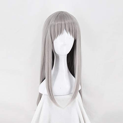 SHJBKpÃlend Long Silver grau Straight Synthetic Wig for Costume with