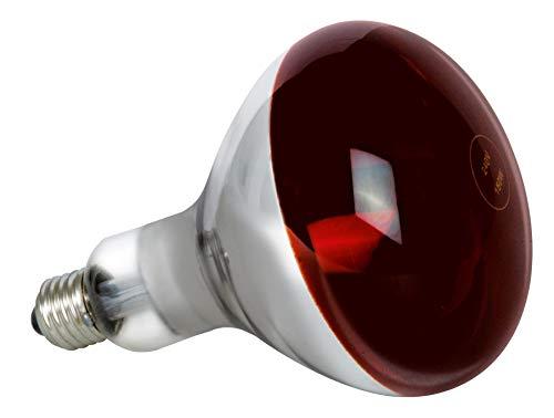 SYLVANIA 0033011 Infrarotlampe Reflektor 250W E27 R125, 250 W, Hell, 12 x 12 x 17.5 cm