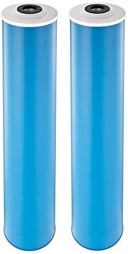 Pentek GAC-20BB Carbon Filter Cartridge, 20' x 4-1/2 (Pack of 2)