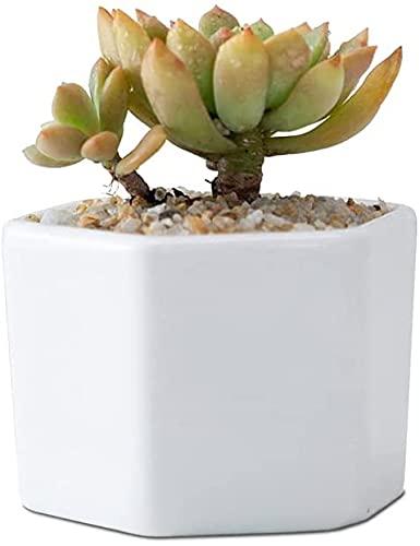 TREEECFCST Macetas De Ceramica Macetero Maceta Simple Maceta de cerámica Blanca Forma de Panal pequeña Maceta de jardín de Seis Lados Porcelana para Plantas de Interior de Cactus 915