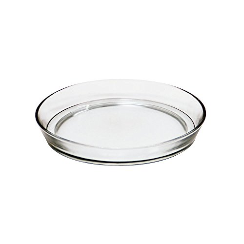 Achla Designs 8 3/4-in Glass Plate, Plant Tray Terrarium Saucer
