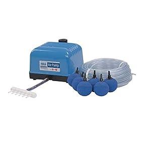 Aquaforte-Luftpumpenset-bestehend-aus-Hi-Flow-LuftpumpeV10-25-m-Luftschlauch--4-x-6mm-4x--5-cm-Luftstein-Sehr-leise-und-krftige-Pumpe