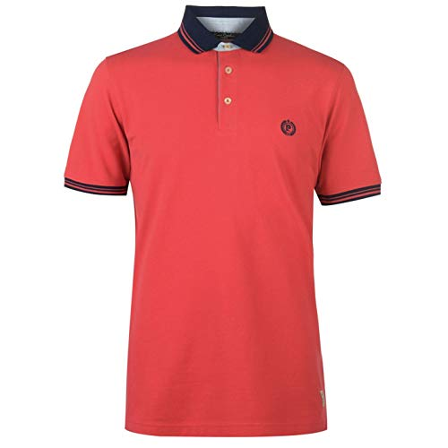 Pierre Cardin Hommes Pique Tipped Polo t-Shirt