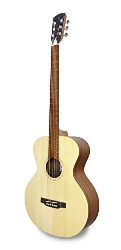 APC Instruments BA100 Baritone Gitarre
