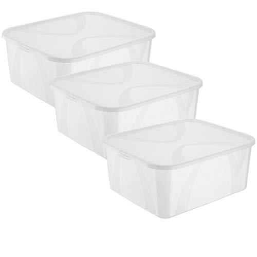 Rotho Arco 3er-Set Aufbewahrungsbox 19l mit Deckel, Kunststoff (PP) BPA-frei, transparent, 3x19l, (42 x 35,1 x 17,2 cm), 3