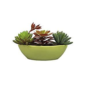 Silk Flower Arrangements RuPost Artificial Plants: Succulents in Ceramic pots