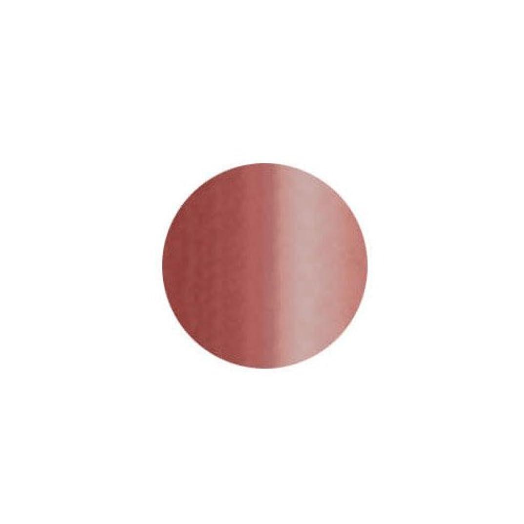 予測金銭的おばさんバイオスカルプチュア(バイオジェル) カラージェル 〔4g〕 (1) 9:スイートタッフィ