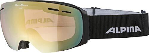 ALPINA Unisex - Erwachsene, GRANBY QVM Skibrille, black matt, One size