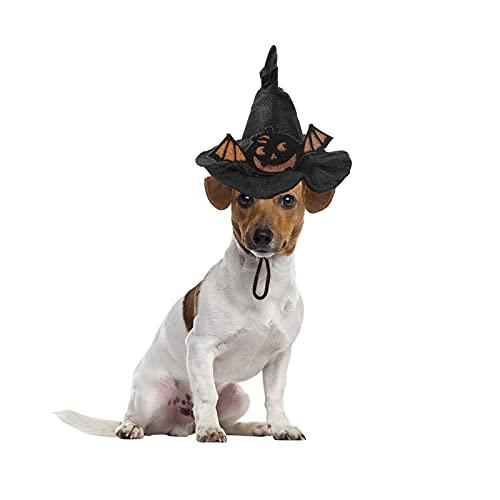 Phoeni Disfraces de Halloween para perro, sombrero de perro, gato, cachorro, Halloween, fiesta, accesorios para disfraz de perro pequeño, cachorro, gato, 17 x 20 cm