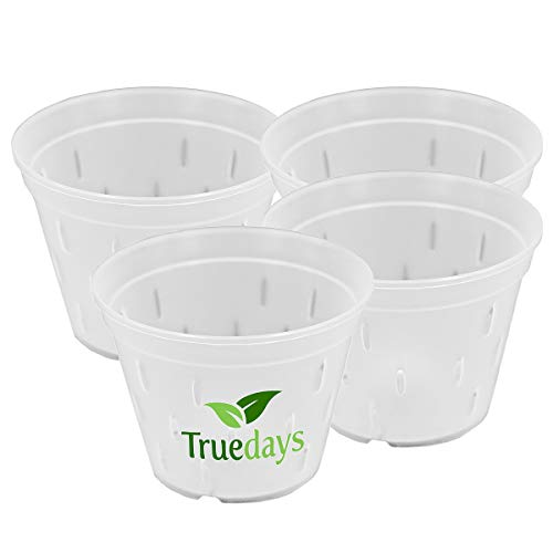 Clear Orchid pots with Holes Plastic Flower Planter 5.5 inch 4 Pack