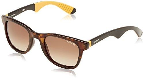 Carrera 6000/R CC D3R Gafas de sol, Negro (Dark Havana Black Yellow/Brown Shaded), 51 Unisex Adulto
