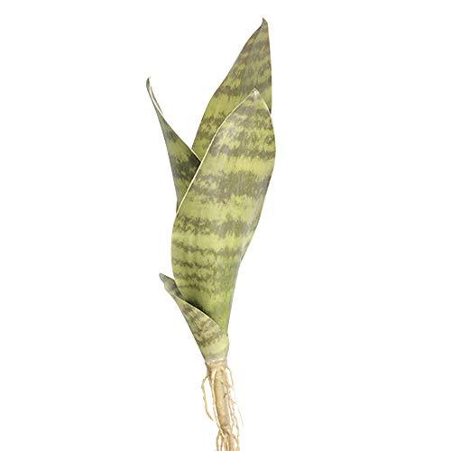 Ironhorse Künstliche Blume Sansevieria Trifasciata Prain Simulation Sukkulente Agavenpflanze Home Office Shop Gartendekoration