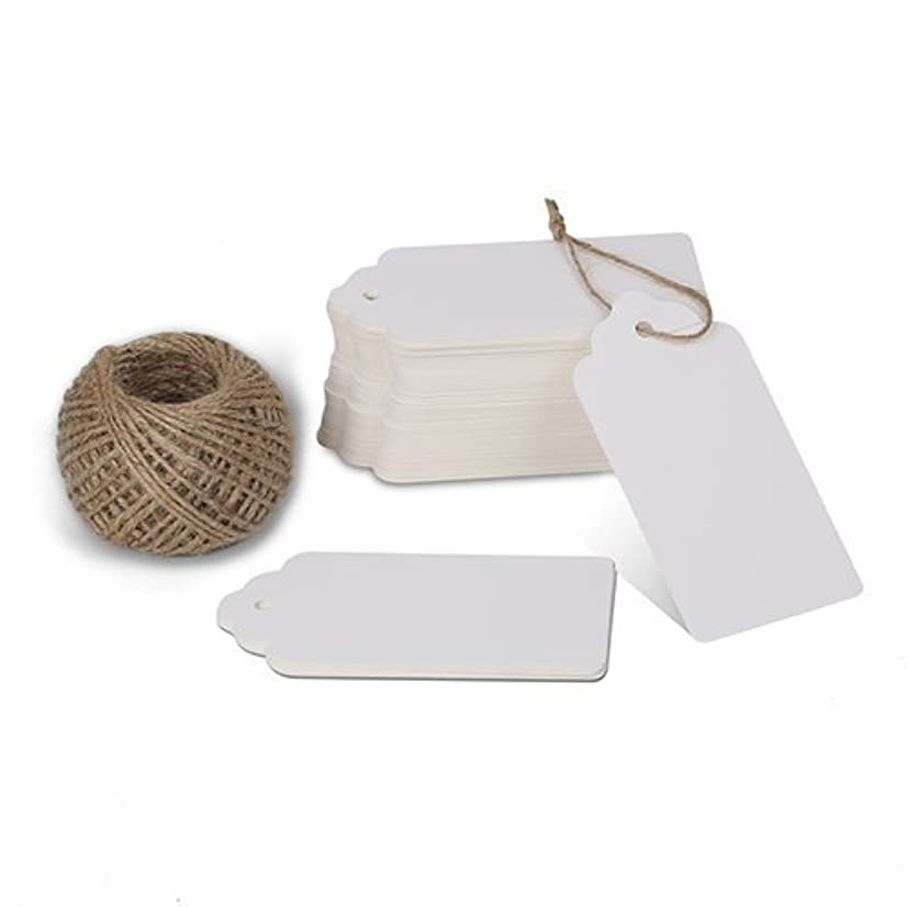 KINGLAKE 100 Pcs White Kraft Paper Blank Gift Tags with String Wedding Favor Hang Tags with 100 Feet Natural Jute Twine Retangle Tags for Crafts & Price Tags Labels