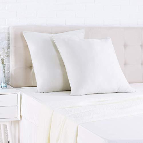 AmazonBasics - Funda de almohada de satén - 65 x 65 cm x 2, Gris brillante
