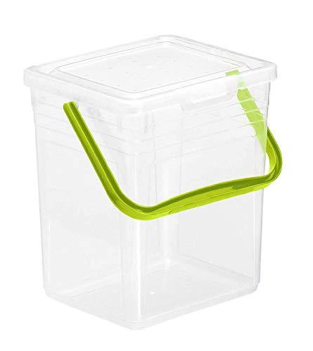 Rotho Powdy Aufbewahrungsbox 7l mit Deckel und Henkel, Kunststoff (PP) BPA-frei, transparent/grün, 5kg/7l (24,0 x 20,0 x 25,5 cm)
