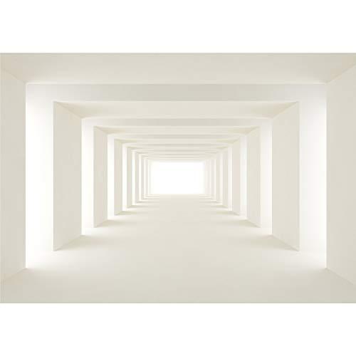 decomonkey   Fototapete 3d Effekt 500x280 cm XXL   Tapete   Wandbild   Wandbild   Bild   Fototapeten   Tapeten   Wandtapete   Wanddeko   Wandtapeten   Tunnel beige