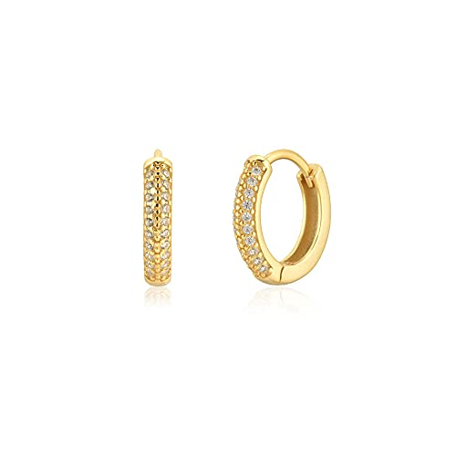 Plata de ley 925 Pendientes de borde de dos tamaños Piercing Rock Moda Punk Joyas Lujo Zirconia cúbica Pave Doble línea Circón Loop-Gold 10mm