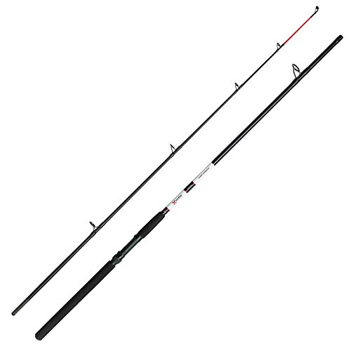 DAM - Canna da pesca in mare Aqua-X Allround 2,40 m, 100-200 g