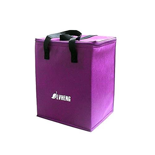Vin Beauty Bolsa de almuerzo de mano, bolsa de picnic, bolsa de almacenamiento portátil, bolsa de aislamiento para acampar al aire libre, barbacoas, actividades familiares