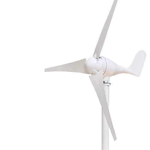 Q&N Aerogeneradores con Controlador y 3 Palas de la turbina de Viento para Marine RV Casas de energía Industrial (600/800/1000 W, 12V / 24V Elige),24v,1000W