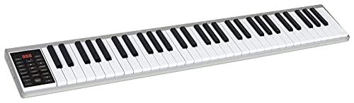 FunKey AK-61 Akku-Keyboard - 61 Tasten in Standardgröße mit Anschlagdynamik - Integrierter 1100 mAh-Akku und integrierte Lautsprecher - USB-MIDI - Inkl. Tasche, Netzteil und Sustain-Pedal - Silber