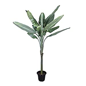 GE FAUX BOTANICAL Banana Tree Potted