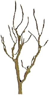 JTT Scenery Products Professional Tree Armatures: Mountain Gum, 3""