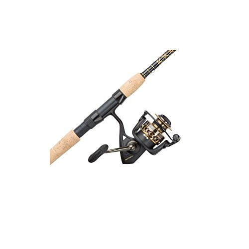 PENN Battle II Combo Black, 8000 Reel Size - 10' - Heavy - 2pc