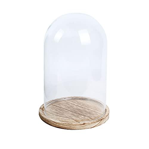 Cúpula expositora de cristal con base de madera, expositor con tapa de campana para decoración de adornos y centros de mesa, Teca porta dulces, flores y decoraciones
