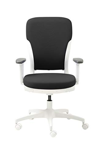 GODREJ INTERIO Plastic Ergonomic Motion High Back Executive Chair Suitable for Work from Home (Matte Finish, Carbon Black)