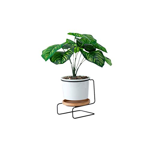 LIYONG Desktop Decorative Flower Stand, Metal Bracket with White Ceramic Potted Pots for Indoor Use Flower stand (Color : B)