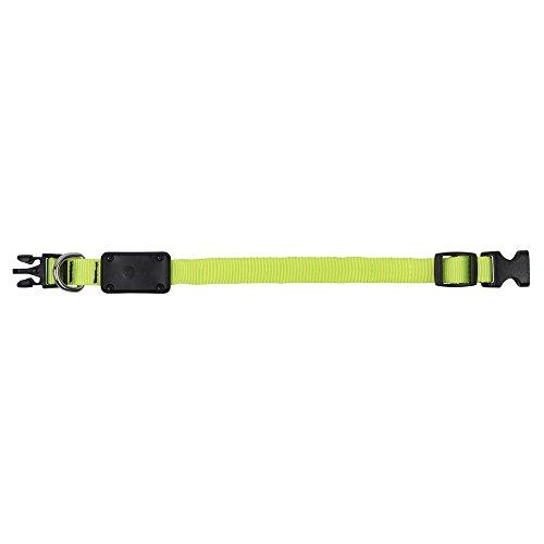 Nite Ize NiteDawg LED Light-Up Dog Collar X-Small 8\