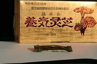 直井霊芝GY株使用 養気霊芝純末 日本国内栽培 1.5g×60包