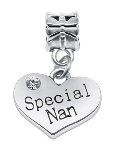 Message Pendant Charms for Charm Bracelets - 28 Message Options to Choose from Women's Girls Jewellery (Special Nan)